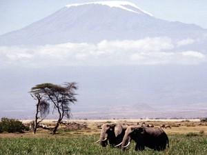 Kilimandjaro-300x225